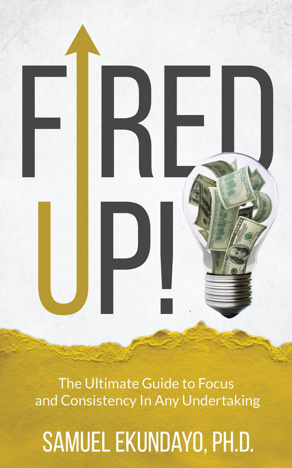 Fired Up! book cover