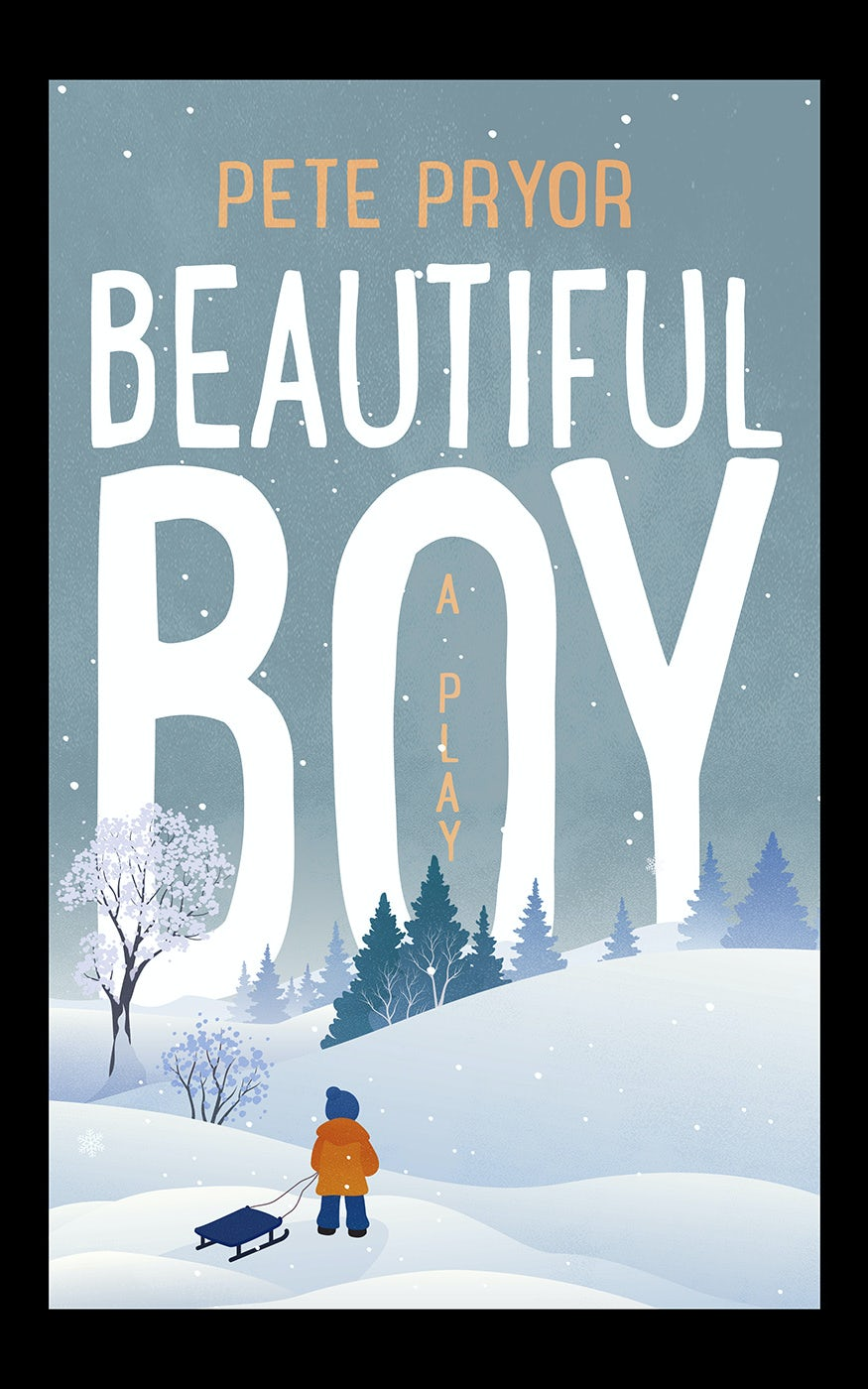 Beautiful Boy book cover