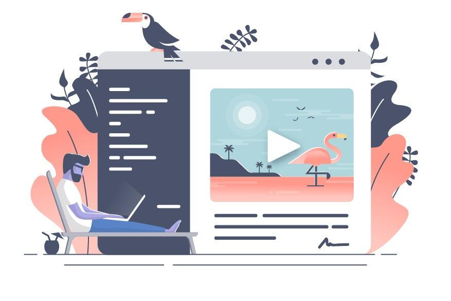 man on laptop flamingo illustration