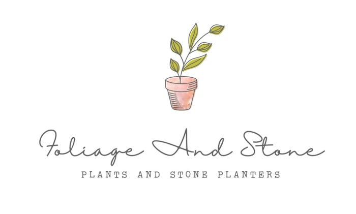 минимальный и натуральный зеленый и коричневый дизайн логотипа растения