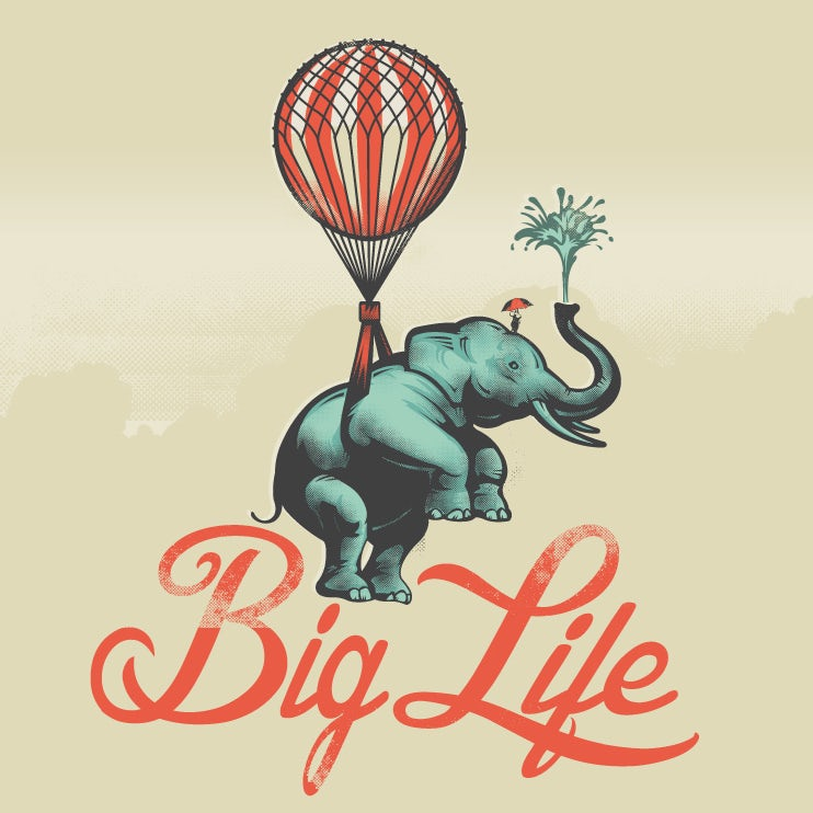 Big Life elephant package design