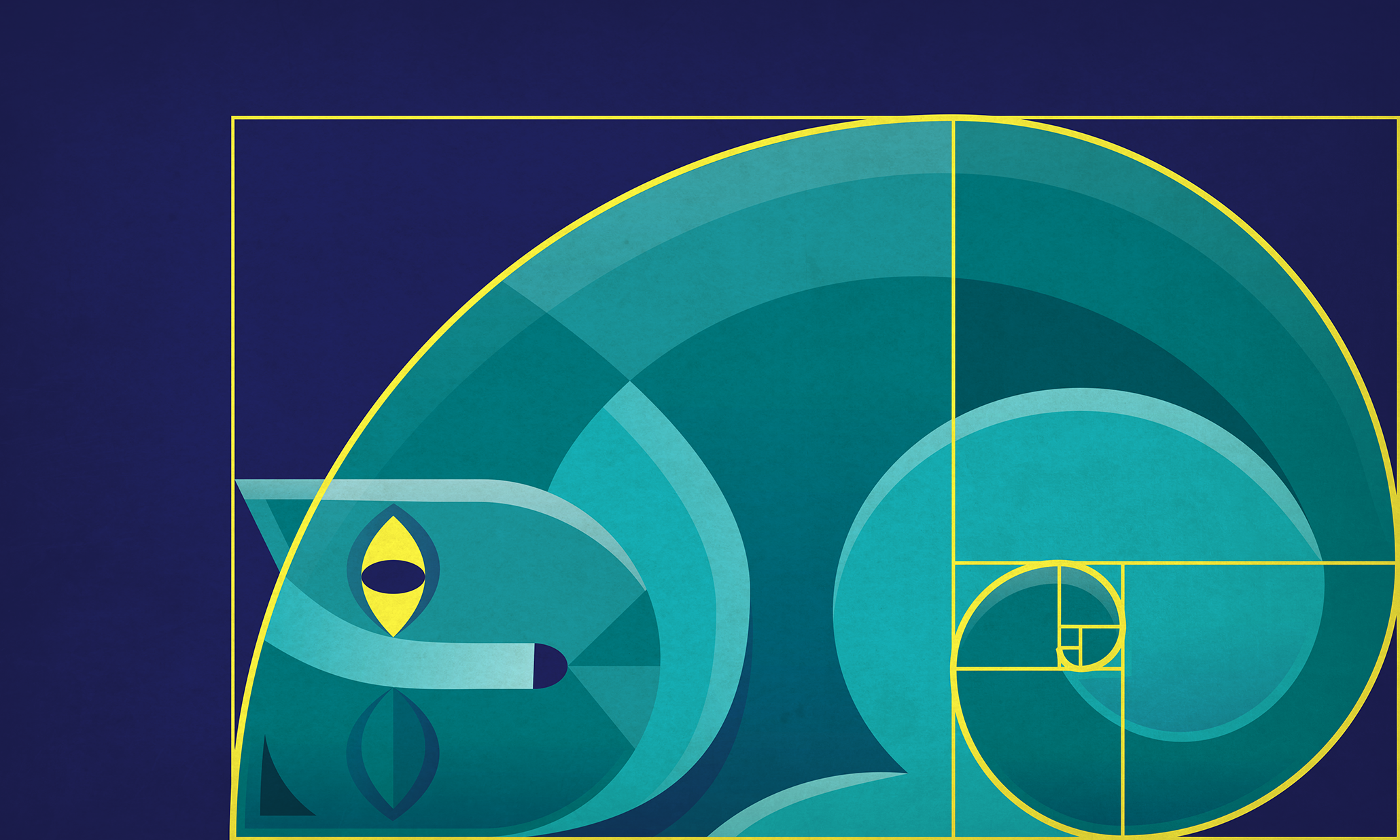 The Golden Ratio And How To Use It In Graphic Design 99designs