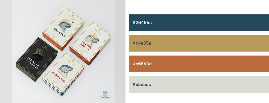 Packaging design with navy, ochre, burnt sienna and light grey color scheme