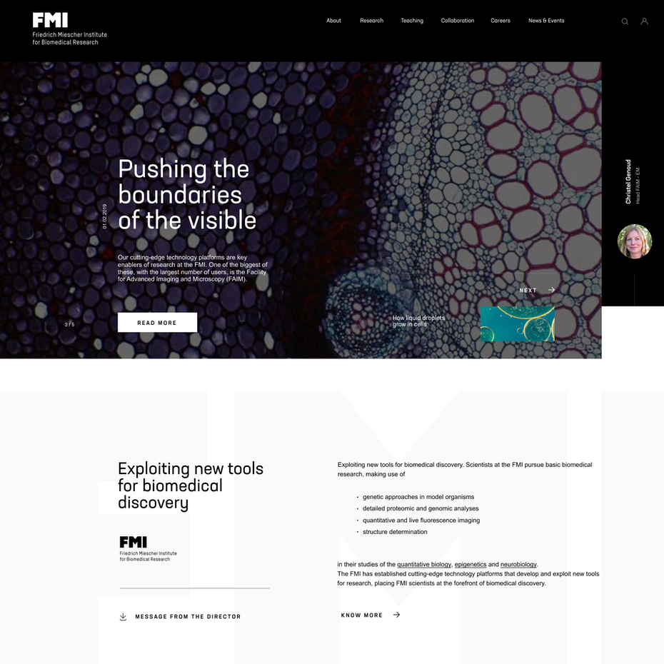 Web design for a biomedical research institute