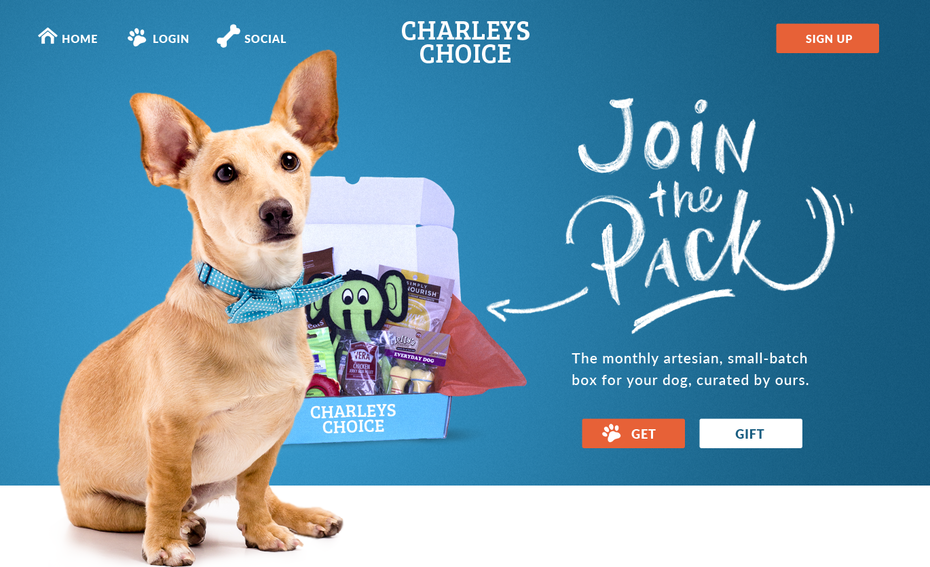 Branding trends 2020 example: Charley's Choice website design