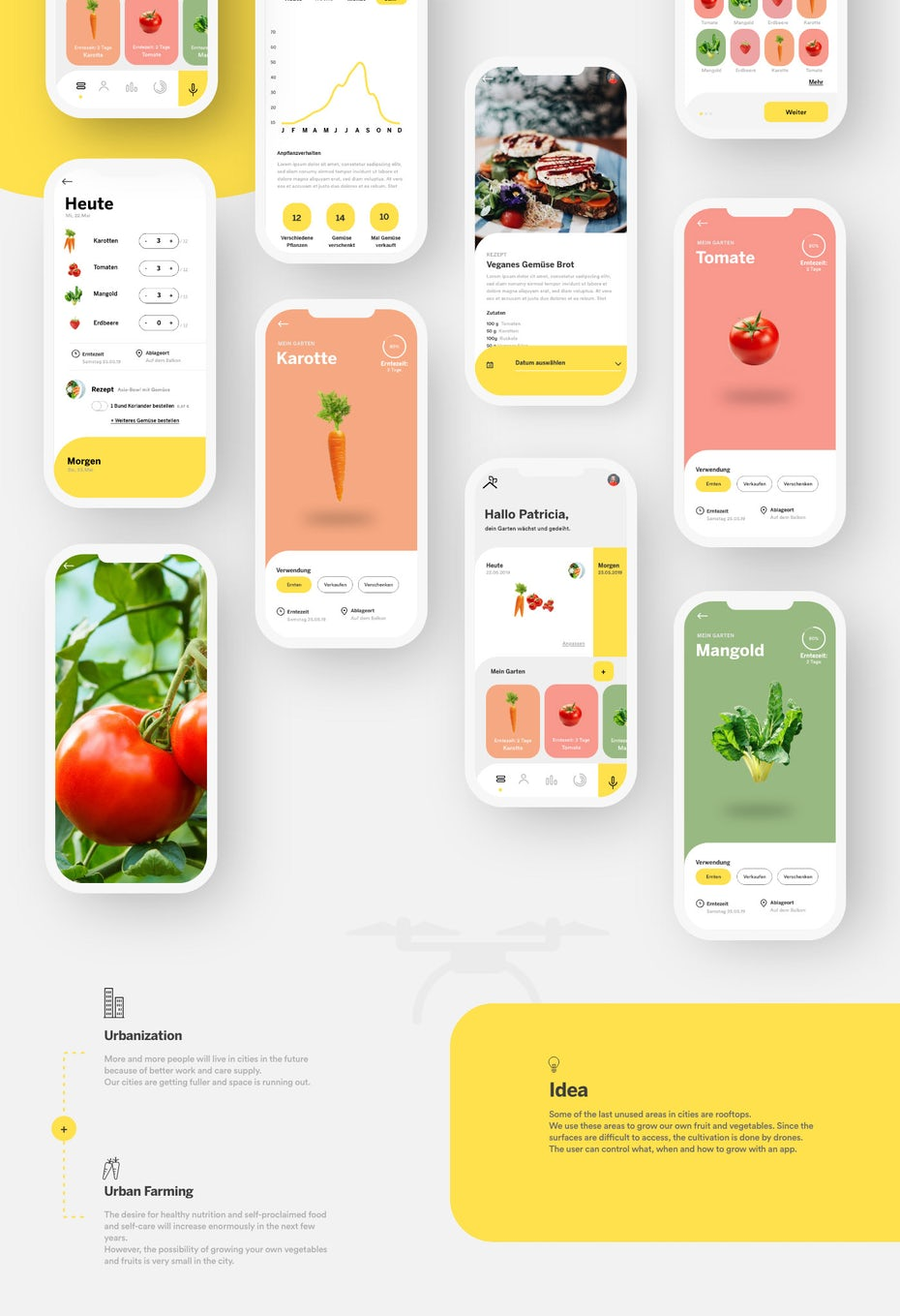 Branding trends 2020 example: Flying Veggies app design