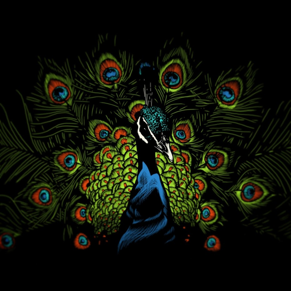 Color trends 2020 example: dark mode Peacock illustration