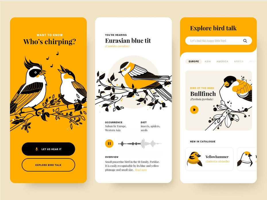 yellow, white and black bird identification app