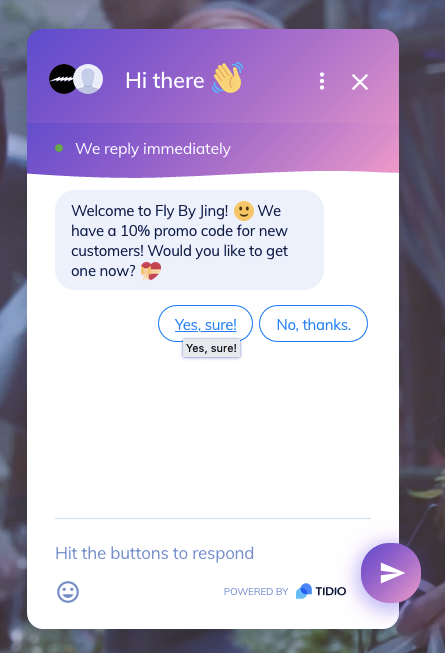 Example of AI chatbot for ecommerce.