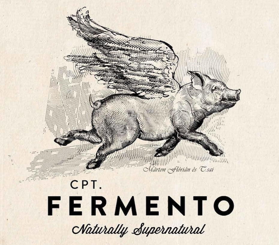 pig with wings vintage illustration representing unique brand experience
