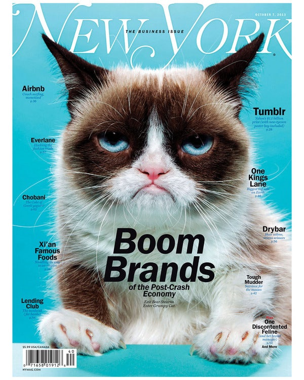 New York magazine cover featuring Grumpy Cat