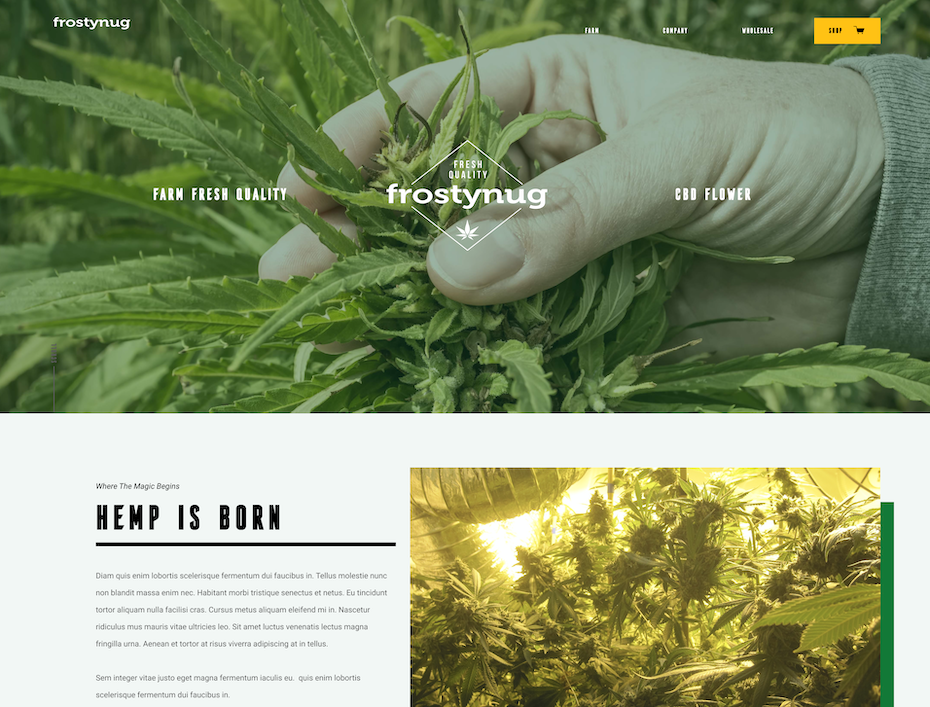 CBD web design