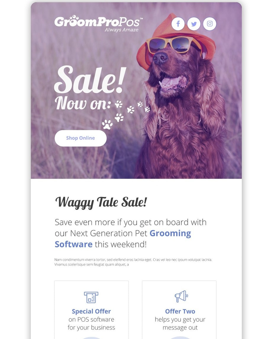 email design for pet grooming business