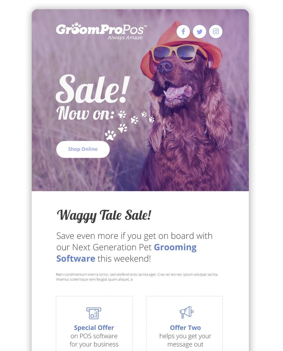 email design for pet business