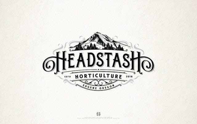 logo design for Headstash