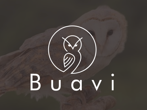 bad logo design of Buavi