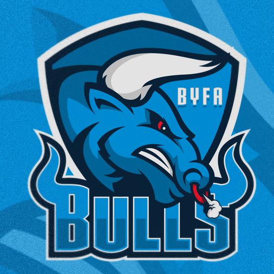 sports logo for Cobra Youth Basketball Club