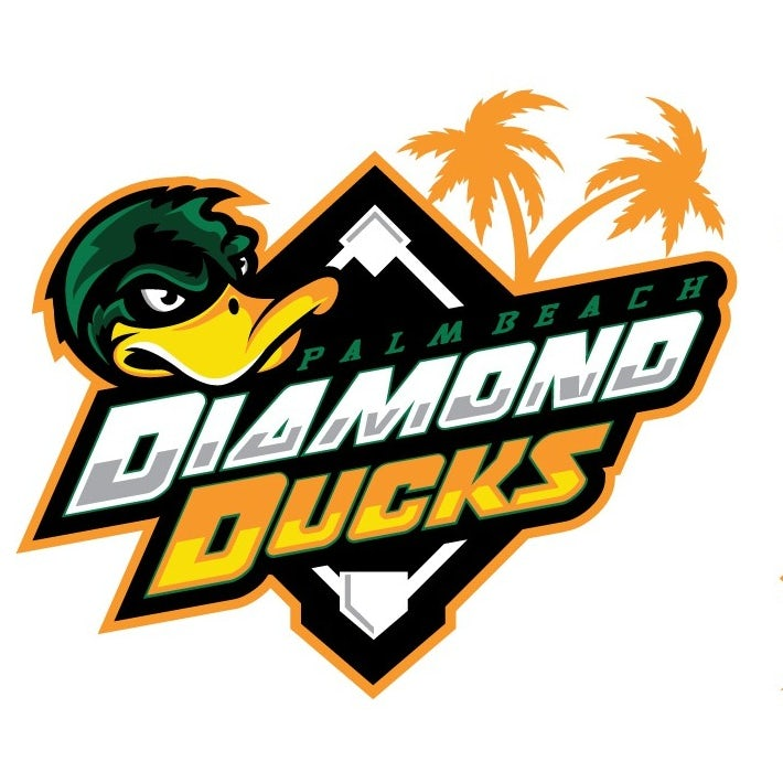 sports logo for Diamond Ducks