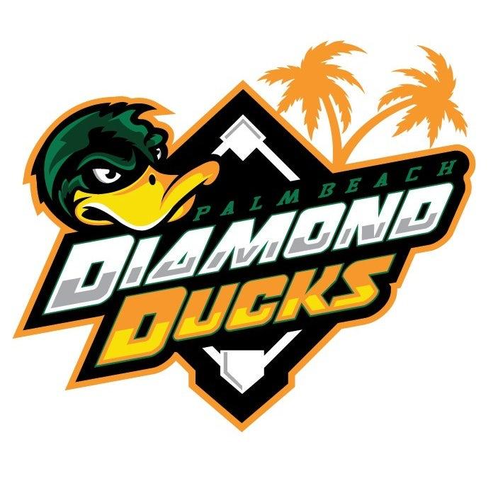 sports logo for Diamond Ducks