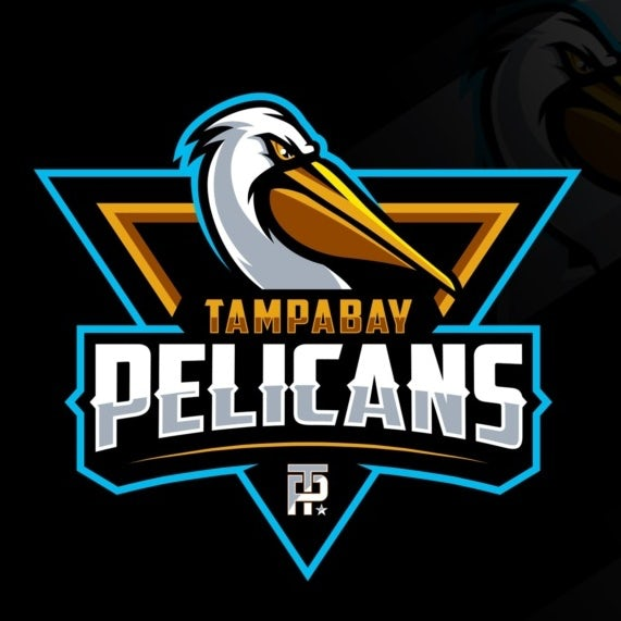 sports logo for Tampa Bay Pelicans