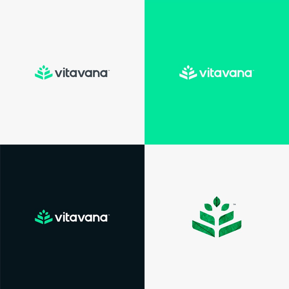 green logo design for vitavana