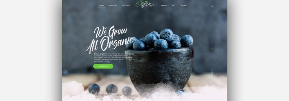 organic produce website design