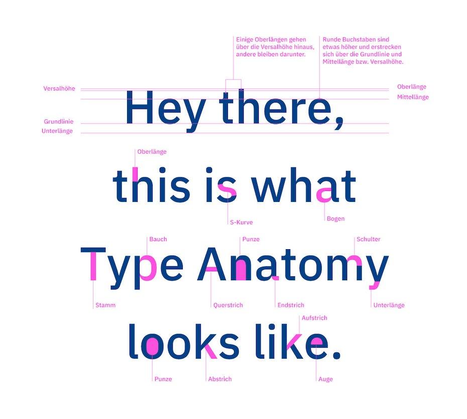 Grundbegriffe der Typografie