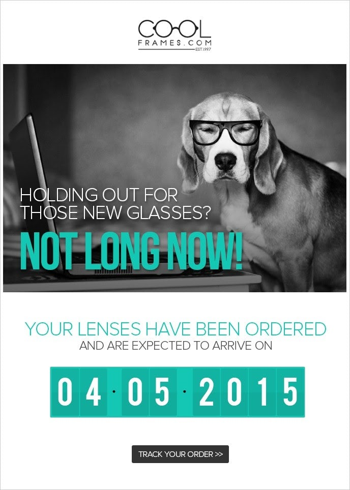 Marketing email design for optician