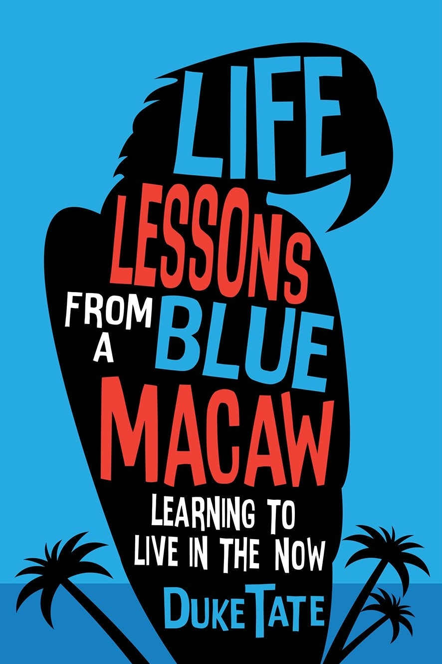 Blue and red hand-lettered book cover with uneven typography