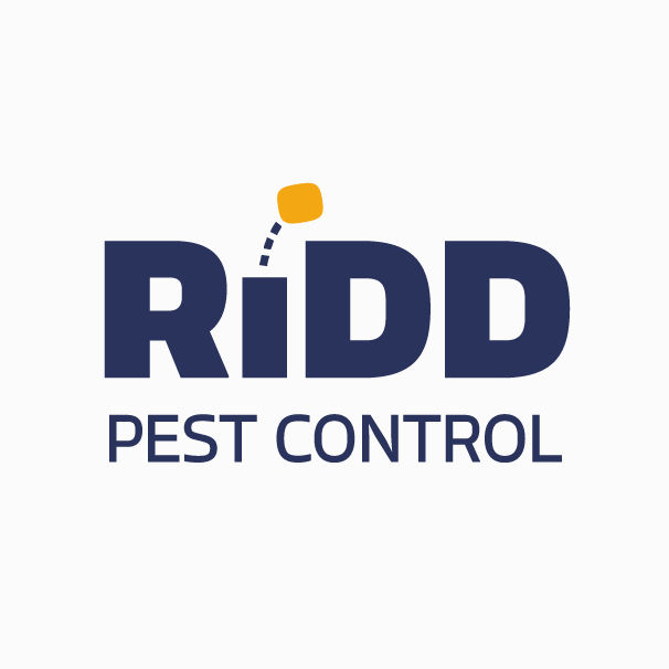 Bounce motion logo design for pest control