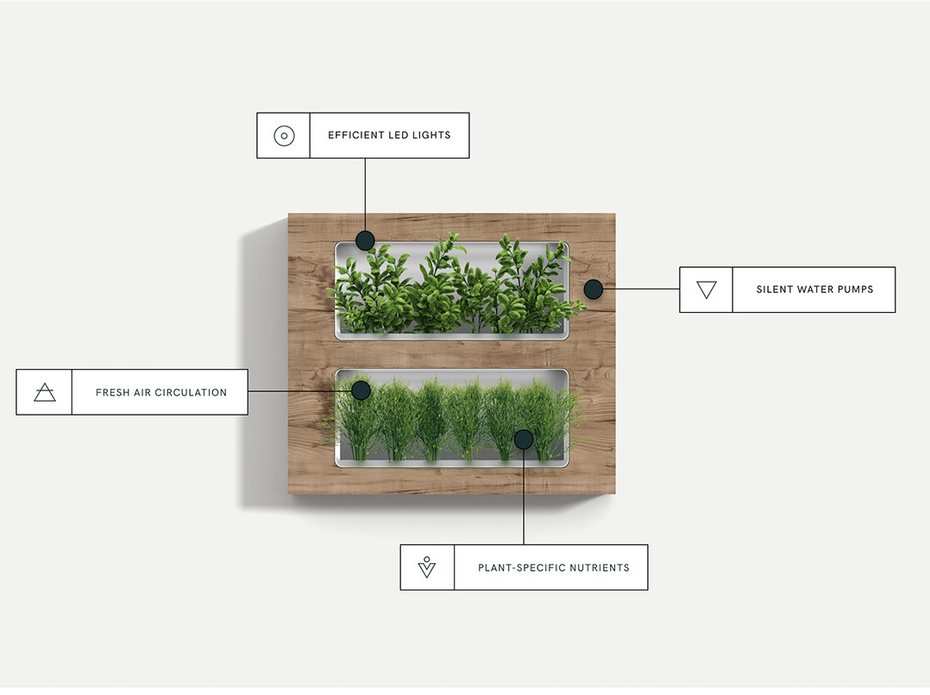 Web page design for modern herb planters