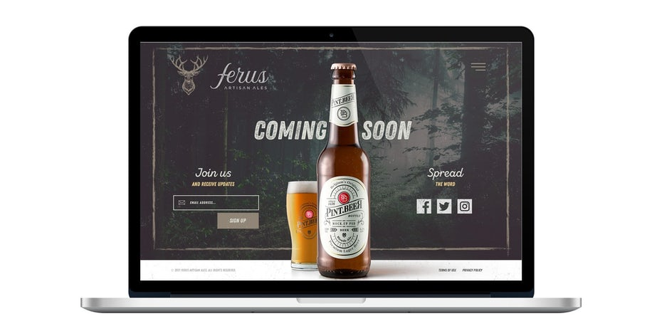 Vintage inspired web design for beer brand