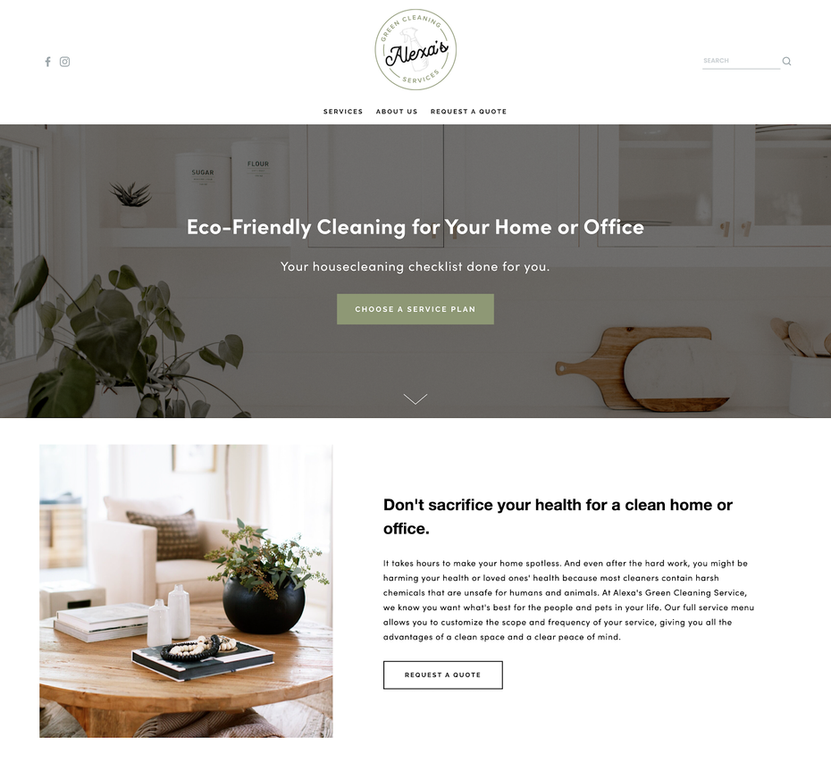 Natural Cleaning Company, Alexa's Green Cleaning