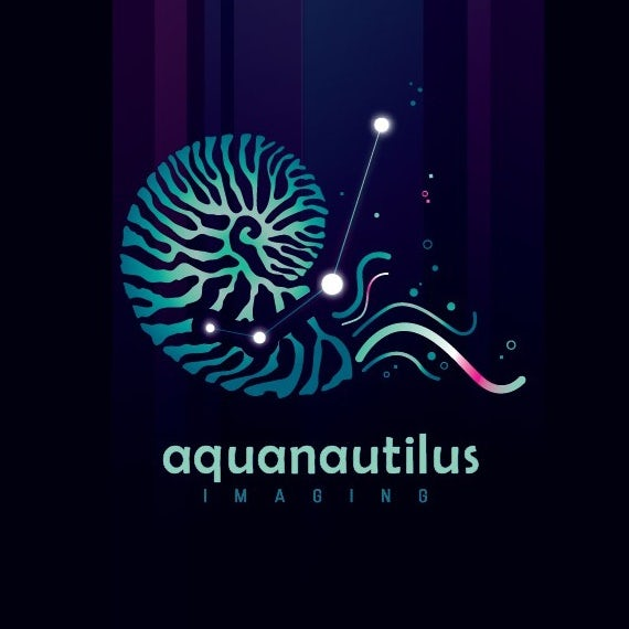 Logo design showing a nautilus illustration merged with a constellation