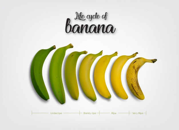 ripeness cycle of a banana