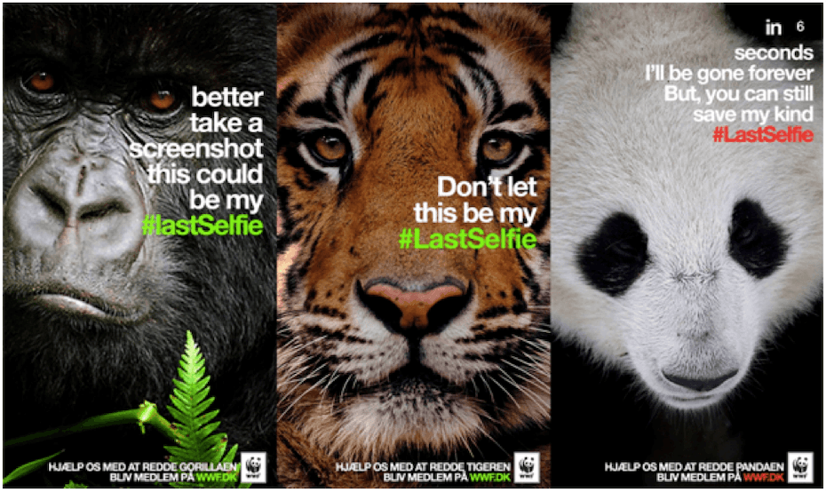 WWF campaign featuring a gorilla, a tiger and a panda