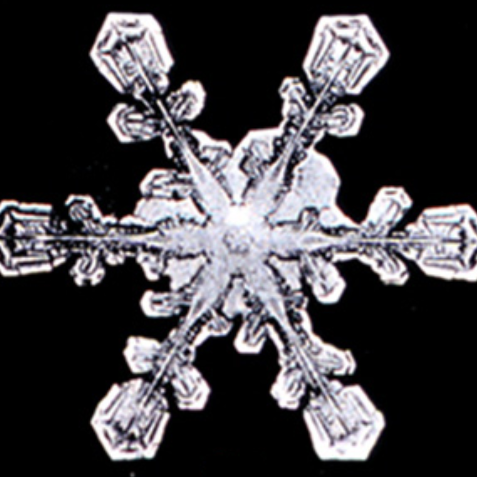 Black and white image of a snowflake