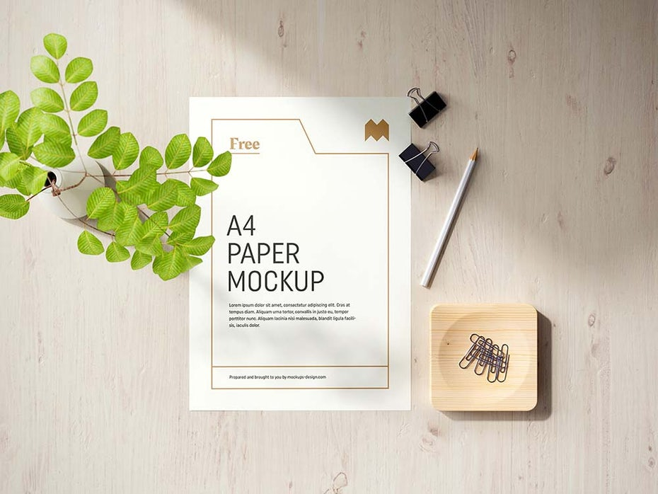 sheet of paper with gold layout, flat next to a plant and binder clips