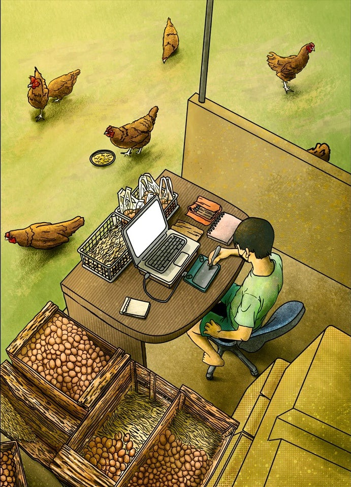 illustration of a designer working at a laptop, surrounded by chickens and egg crates