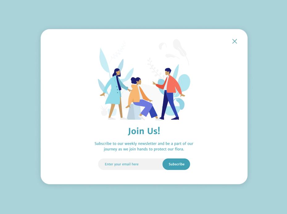 pop-up design for newsletter sign up