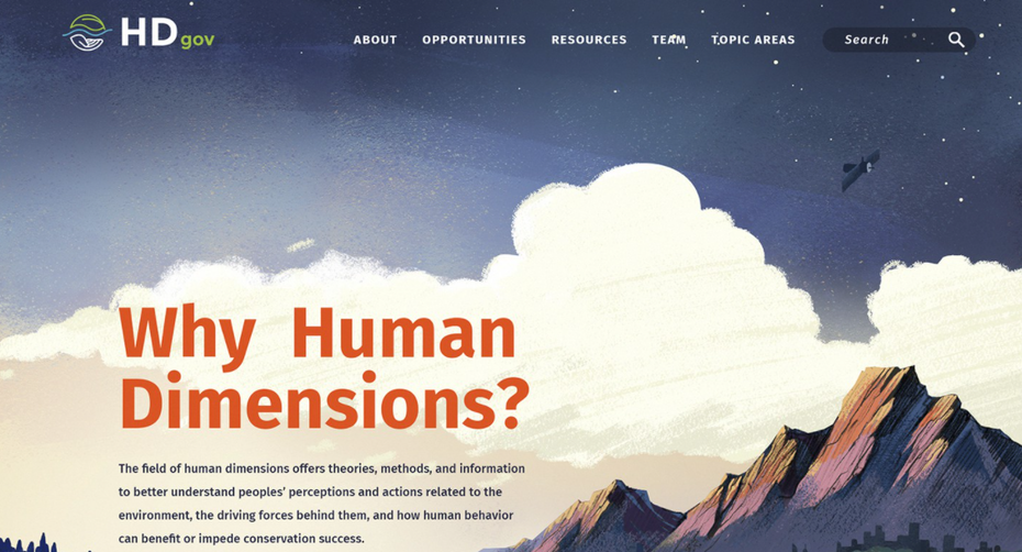 Homepage web design with an illustrated background