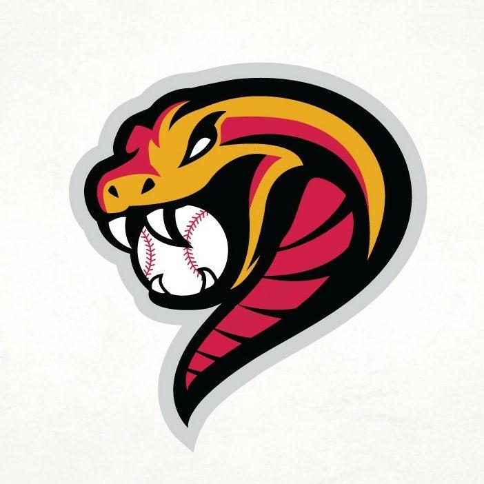 snake baseball logo