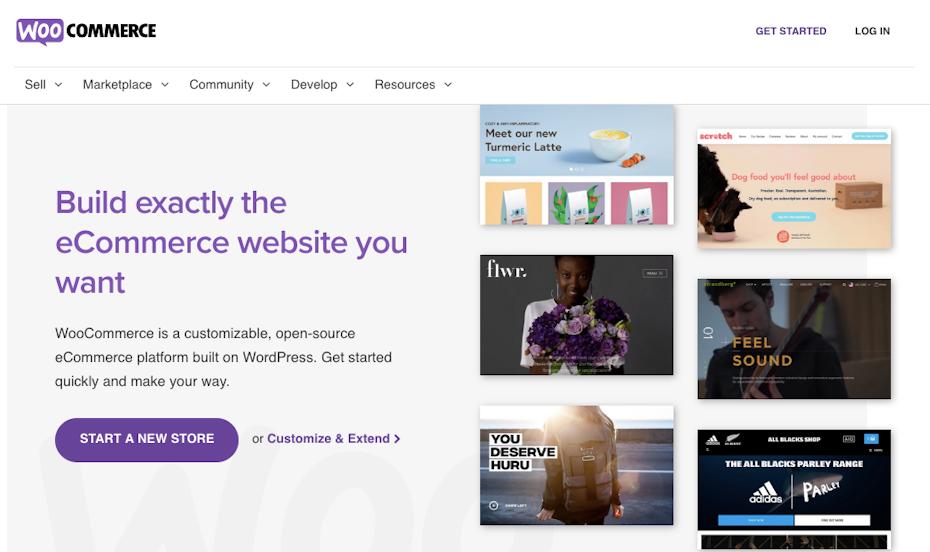 Screenshot of Shopify alternatives: WooCommerce