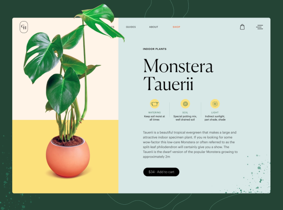 Product page design for a plant shop