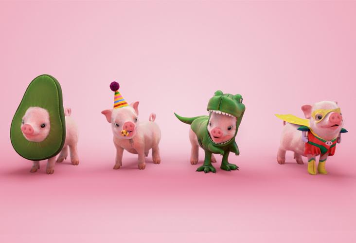pigs dressed up