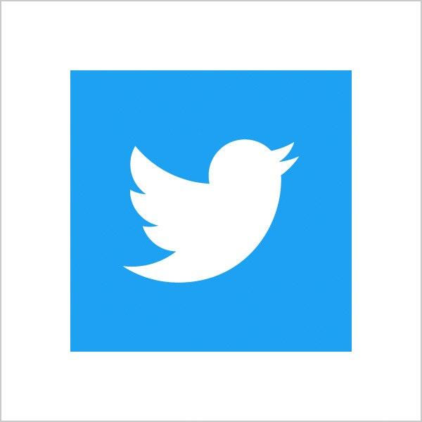 twitter blue logo