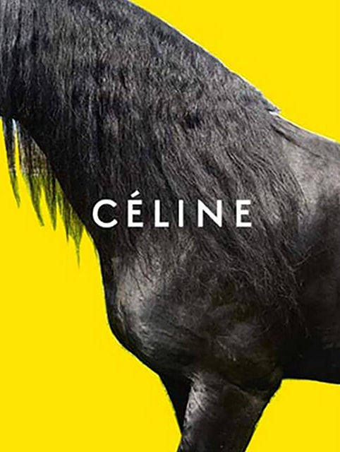celine-winter-2016-ad