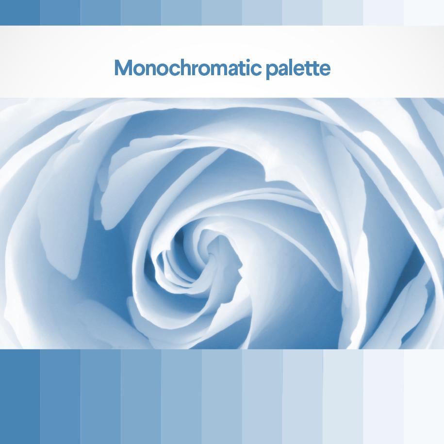 Monochromatic palette