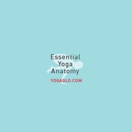 Jason Crandell Yoga logo