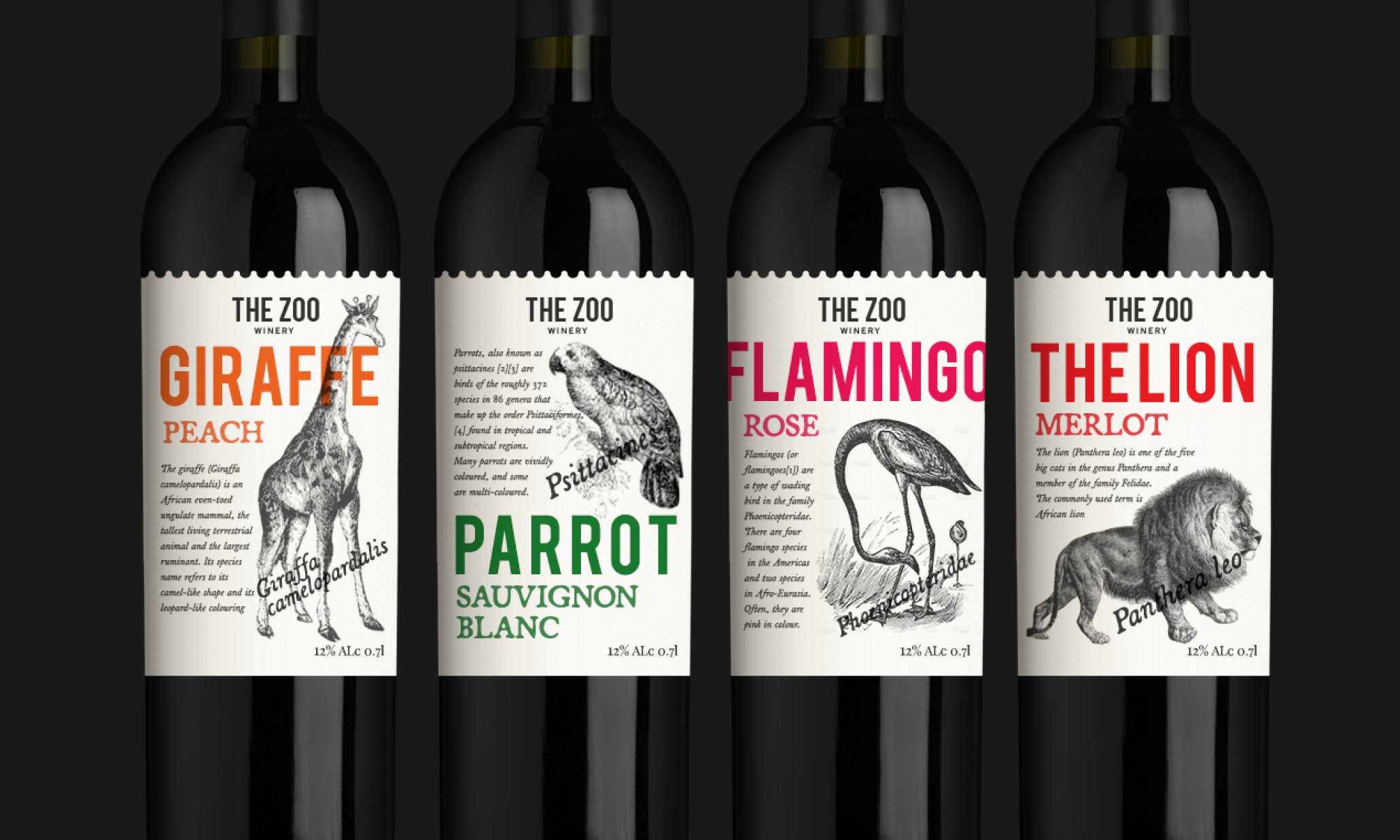 How To Design A Wine Label The Ultimate Guide  Designs
